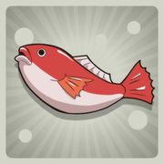 昴の獲りたて魚.jpg